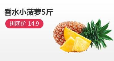 非泰国小菠萝凤梨